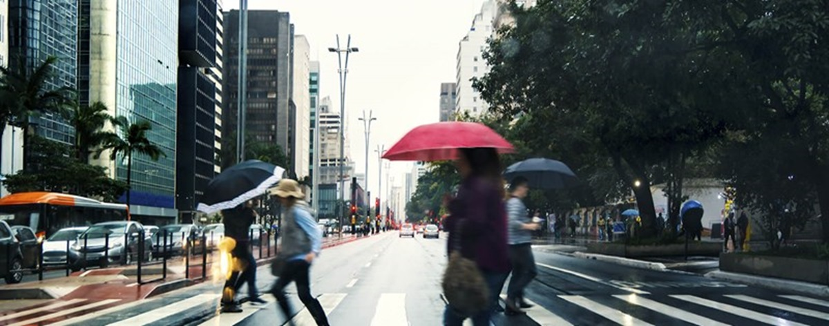 Paulista Avenue Under A Drizzle 000068667907 Double